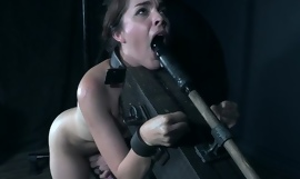 Submissive brunette Amarna Miller gets tied up and toyed by her master